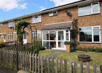 Thumbnail 3 bed terraced house for sale in Elm Road, Bishops Waltham