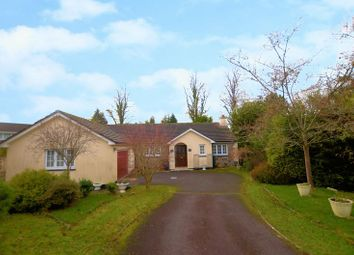 Thumbnail 3 bed detached bungalow for sale in St. Johns, Tavistock