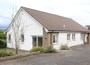 Thumbnail 3 bed detached bungalow for sale in Muiralehouse Road, Bannockburn