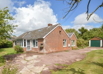 Thumbnail 4 bed detached bungalow for sale in West Brabourne, Ashford