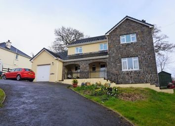 Thumbnail 4 bed detached house for sale in Nantyrhibo, Llandeilo