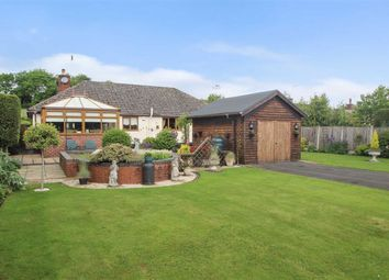 Thumbnail 4 bedroom detached bungalow for sale in Treflach, Oswestry