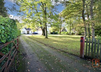 Thumbnail 5 bed detached bungalow for sale in Playford Road, Little Bealings, Woodbridge, Suffolk