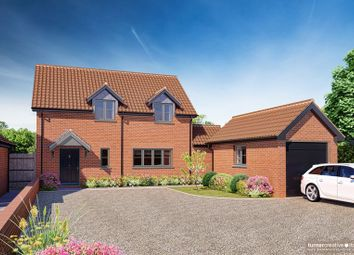 Thumbnail 3 bed detached house for sale in Castle Hill Road, New Buckenham, Norwich