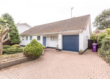 Thumbnail 2 bed bungalow for sale in Panter Crescent, Montrose