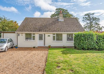 Thumbnail 3 bed detached bungalow to rent in Holt End Lane, Bentworth, Alton