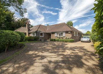 Thumbnail 4 bed bungalow for sale in Rectory Lane, Angmering, West Sussex