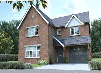 Thumbnail 4 bed detached house for sale in Harts Green Close, Birmingham