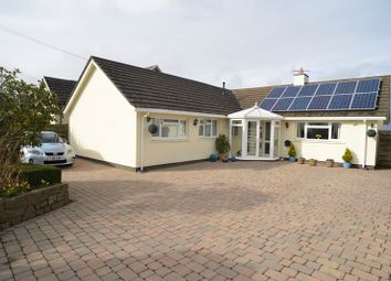 Thumbnail 3 bed bungalow for sale in Moorland Road, Freystrop, Pembrokeshire