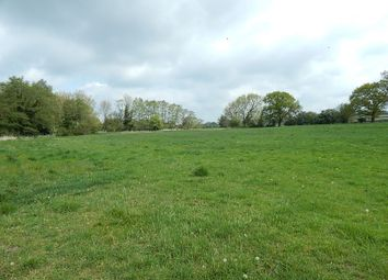 Thumbnail Land for sale in Land Off Station Road, Forncett St. Peter, Norwich, Norfolk