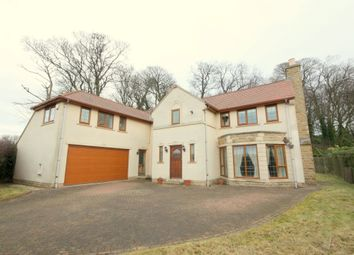 Thumbnail 4 bed detached house to rent in Selby Road, Garforth, Leeds