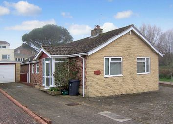 Thumbnail 3 bed detached bungalow to rent in Lydgates Road, Seaton