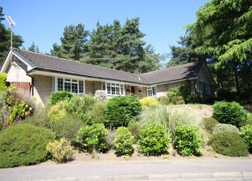 Thumbnail 4 bed detached bungalow for sale in Egmont Close, Avon Castle, Ringwood