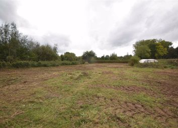 Thumbnail Land for sale in Canon Frome, Ledbury