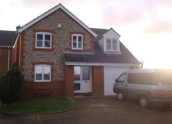 Thumbnail 4 bed detached house to rent in Sandy Drove, Maids Cross Hill, Lakenheath, Brandon