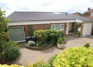 Thumbnail 3 bed bungalow for sale in Manor Drive, Cadeby, Doncaster
