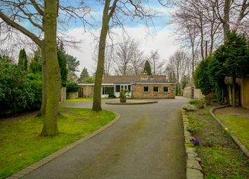 Thumbnail 4 bedroom bungalow for sale in 9 Whin Hill Road, Bessacarr, Doncaster, South Yorkshire
