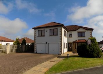 Thumbnail 4 bed detached house to rent in The Castings, Dunfermline