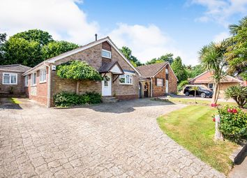 4 bed bungalow for sale in Rosemary Way, Horndean, Waterlooville PO8