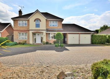 Thumbnail 3 bed detached house for sale in Maple Way, Colchester