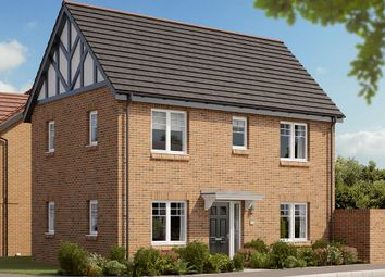"Thumbnail 3 bed detached house for sale in ""The Dalton"" at Berry Hill, Mansfield"