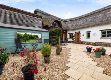 Thumbnail 3 bed detached house for sale in Meadow View, Fyfield Road, Weyhill, Andover