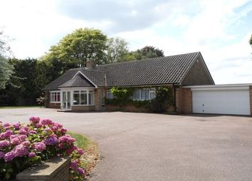 Thumbnail 3 bed bungalow to rent in The Promenade, Wellingborough