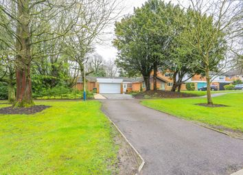 Thumbnail 5 bed bungalow to rent in Antringham Gardens, Birmingham, West Midlands B153Ql