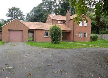 Thumbnail 4 bed detached house to rent in Church Road, Christchurch, Wisbech