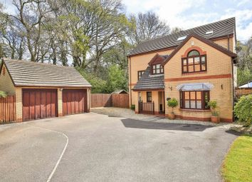 Thumbnail 6 bed detached house for sale in Havenwood Drive, Thornhill, Cardiff