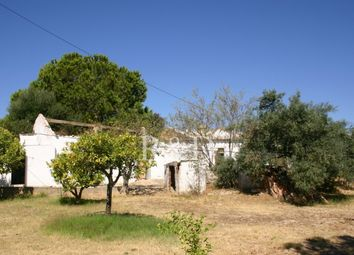 Thumbnail 1 bed farmhouse for sale in 8700 Moncarapacho, Portugal