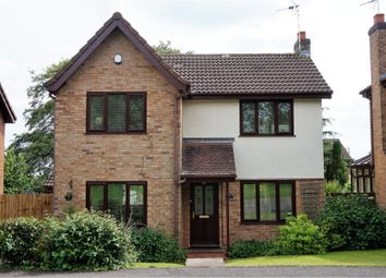 Thumbnail 3 bedroom detached house for sale in Spindletree Drive, Derby