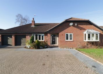 Thumbnail 4 bed detached bungalow for sale in Moor Lane North, Ravenfield, Rotherham, South Yorkshire