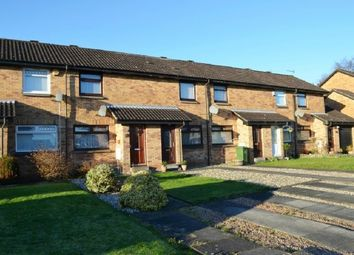 Thumbnail 1 bed terraced house to rent in Glenbo Drive, Denny