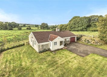 Thumbnail 3 bed detached bungalow for sale in Wayford Lane, Clapton, Crewkerne, Somerset