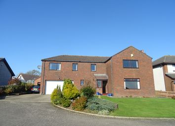 Thumbnail 5 bed detached house for sale in 3 Annanhill, Annan