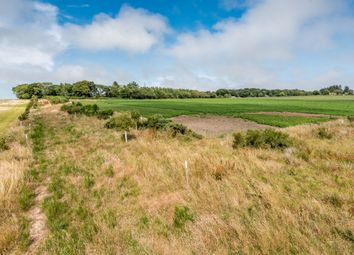 Thumbnail Land for sale in Mountboy Farm, Montrose, Angus