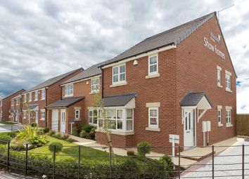 Thumbnail 3 bedroom detached house for sale in The Spitfire, Station Road, Blaxton, Doncaster