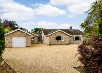 Thumbnail 5 bed detached bungalow for sale in Cross Road, Swanton Abbott, Norwich