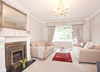 Thumbnail 4 bed detached house to rent in The Village, Wigginton