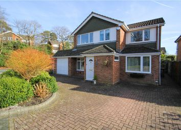 Thumbnail 4 bed detached house for sale in Hawkswood Avenue, Frimley, Camberley, Surrey
