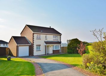 Thumbnail 4 bed detached house for sale in Juniper Grove, Whitehaven