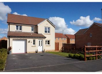 Thumbnail 4 bed detached house for sale in St Michael's Gardens, South Petherton