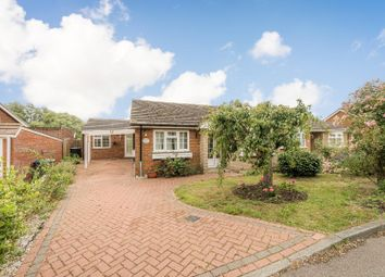 Thumbnail 4 bed semi-detached bungalow for sale in Walnut Tree Lane, Westbere, Canterbury