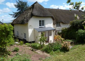Thumbnail 2 bed cottage to rent in Clapham, Exeter