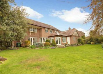Thumbnail 4 bed detached house for sale in Chestnut Mews, Tickton, Beverley