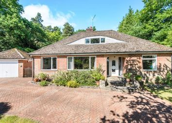 Thumbnail 4 bed bungalow for sale in Lower Bourne, Farnham, Surrey