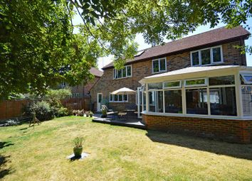 Thumbnail 4 bed detached house for sale in Buttercup Close, Lindford, Bordon