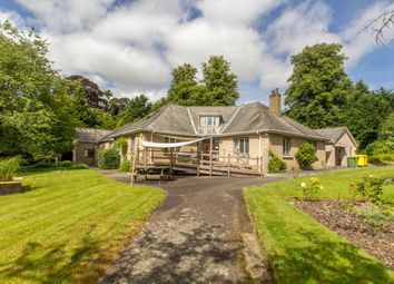 Thumbnail 5 bed detached bungalow for sale in Down Road, Tavistock