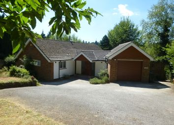 Thumbnail 5 bed detached house to rent in Farnham Road, Haslemere